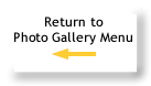 Return to Photo Galley Menu